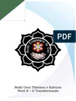 kupdf.net_reiki-usui-nivel-2.pdf