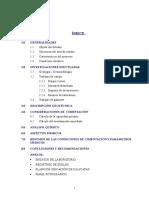 Informe - San Borja