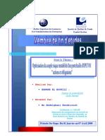 Optimisation du couple risque rentabilité dun portefeuille dOPCVM actions et obligataires.PDF
