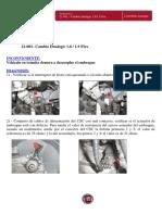 Cambio dualogic 1.8-1.9 flex.pdf