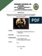PROYECTO FINAL DE LOS FINALES FORMULACIÓN.docx