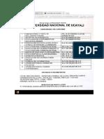 Universidad Nacional de Ucayali.docx
