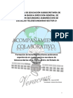 Veracruz_acom_colab.docx