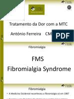 2019-02 Seminário Dor Fitoki 2M.pdf