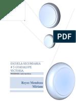 Reyes Mendoza Miriam.pdf