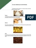 Principales Productos Que Exporta Guatemala