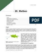 script-tmp-20__malbec.pdf