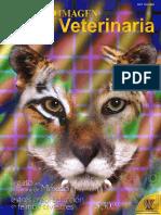 El gato en cultura Mejico_etc.pdf