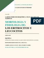 Practica Hematograma , Hematocrito, recuento leucocitos, eritrocitos