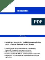 Biologia Do Solo Micorrizas - 2017