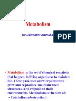 Daw Metabolism