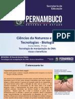 Tecnologia de Manipulação Do DNA Riscos e Benefícios