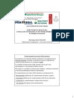2.4.2_Prove_muratura_Tullini.pdf