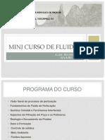 Mini_Curso_Fluidos.pdf