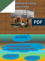 KULIAH 22 - Komorbiditas Di Bidang Agroindustri (Dr. Hairrudin, M.kes)