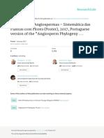 filogenia angiospermas