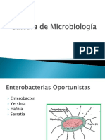 Cátedra de Microbiología Enterobacterias