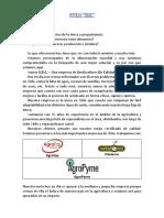 Pitch SDC - Trabajo de Tecnología.docx