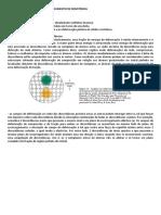 Discordâncias e mecanismos de aumento de resistência.docx