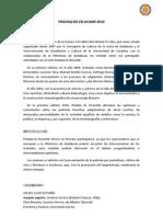 Páginas de celuloide 2010