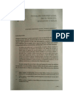 Enfoques Conceptuales de La Relación Ambiente y Salud