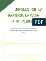 faringe_cara_05.doc
