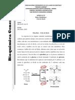 Ensayo Ciclo de Kress y Cinética Enzimática