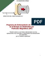 Particular magneticas
