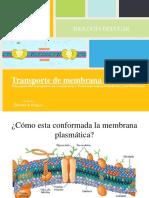 biocelclasepermeabilidaddemembranacelular-140927143936-phpapp01