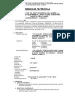TDR PONTON ELEFANTE.docx