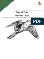 Falconry Study 1