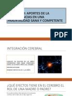 SEMINARIO Aportes neurociencias ppt