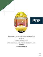 Informe de Practica Profesional Docente
