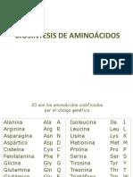 15. Biosíntesis de Aminoácidos