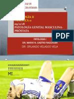 Patología Femenia y Masculina