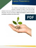 Mecanismos Apoyo Financiero Tecnico