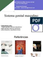 Evolução Saude Publica No Brasil PDF