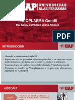 Clase 8 Toxoplasma Gondii