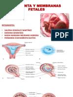 Placenta y Membranas Final