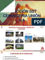 Inducción SST Cervunión ULTIMA - Copia