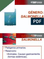 clase 8- Salmonella