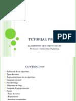 TUTORIAL PSEINT - elementos de compu - clase04-.pdf