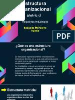 ejemplos de estructura organizacional Relaciones Industriales
