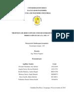 Proyecto de cátedra tecnología limpias final.docx