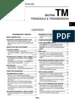 TM-Transmission-gtr-store.pdf