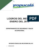 LOGROS ENERO 2018.doc