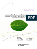 Rapport_P6_2015_25 (1).pdf