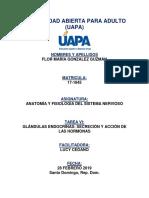 UAPA - Anatomia y Fisiologia del Sistema Nervioso - Tarea 6