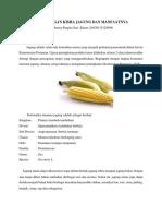 kandungan kimia jagung