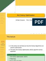 Ant Colony Optimisation